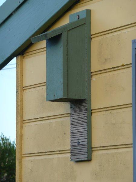 Insect bat box