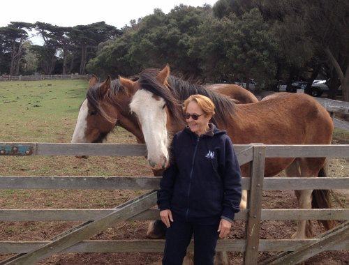 Talk to the horses!