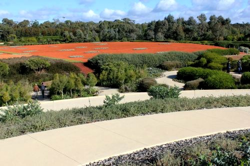 View to red sand garden