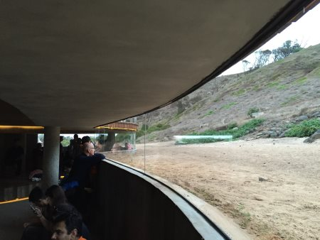Underground viewing experience at the penguin parade, Phillip Island