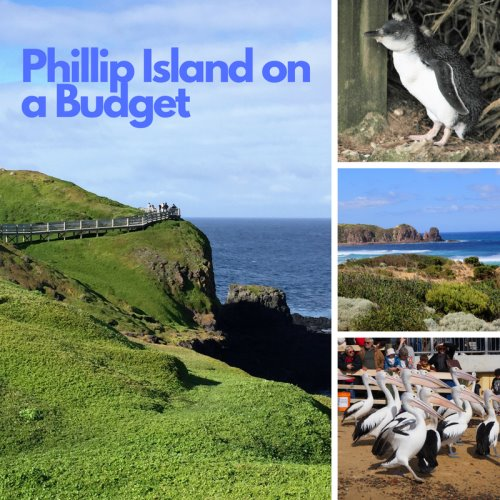Phillip Island on a budget