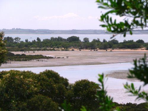 Rhyll Inlet, Phillip Island