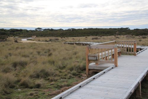 Boardwalk at Scenic Estate Conservation Reserve