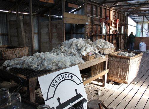 Shearing shed at Warrook Farm