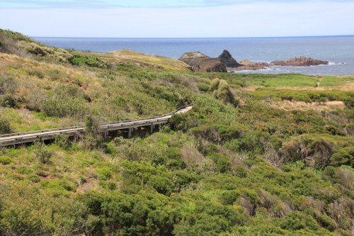 Walking track at Pyramid Rock, Phillip Island
