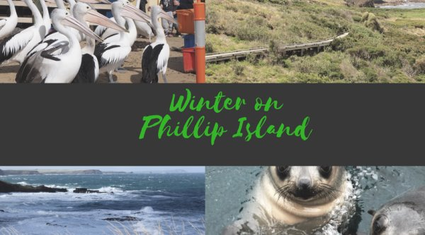 Tips for enjoying Phillip Island in the winter
