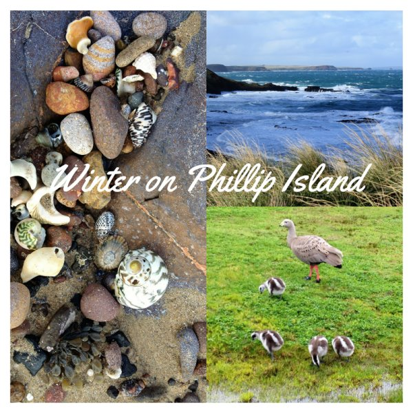 Winter on Phillip Island