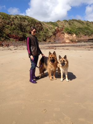 Walking the dogs on the beach at Phillip Island